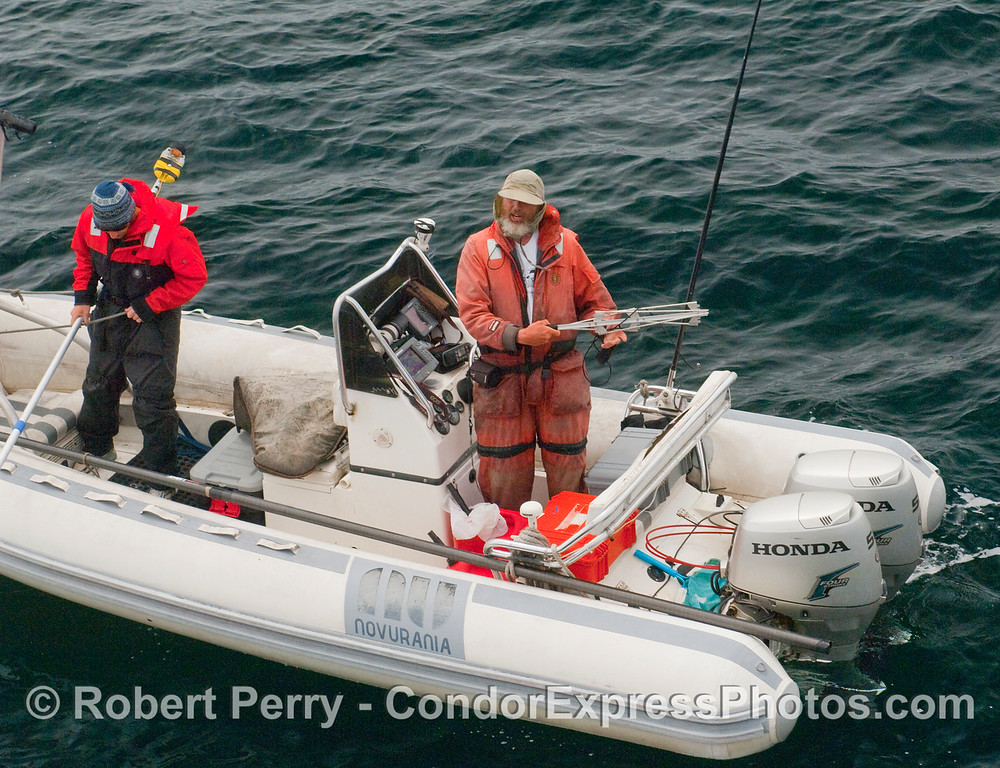 John Calambokidis  holds the tracking antenna by which he locates his whale tags.