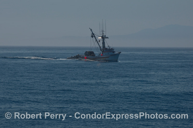 "Purse seiner ""Triunfo"" heads out to the fishing grounds."
