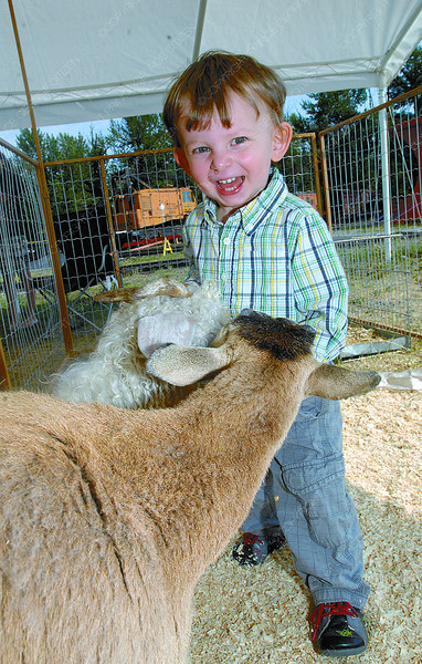 Landon Cameron, 20 months has some fun at the Barnyard Buddies petting zoo at Family Fun Days at the Railway and Forestry Museum. Citizen photo by Brent Braaten