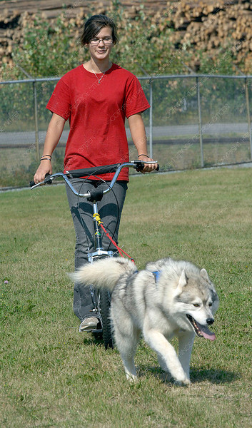 Nicole Swan from Dog Power Adventures gets a ride on a scooter courtasy Solo during the Family Fun Day at the Railway and Forestry Museum Saturday. Dog Power adventures had a display and rides with their dogs. Citizen photo by Brent Braaten