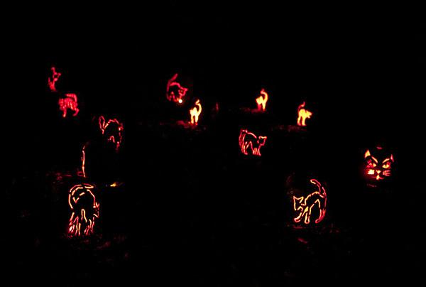 2009-10-23 - Blaze Again!