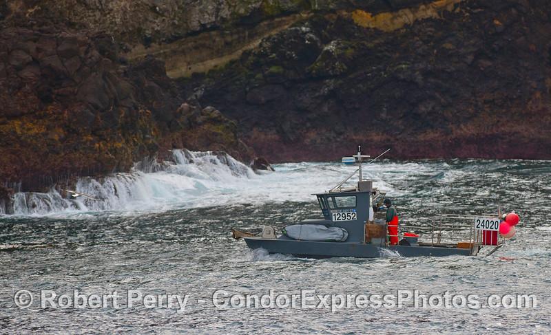 Commercial lobstermen pull a trap off the seafloor at Santa Cruz Island.