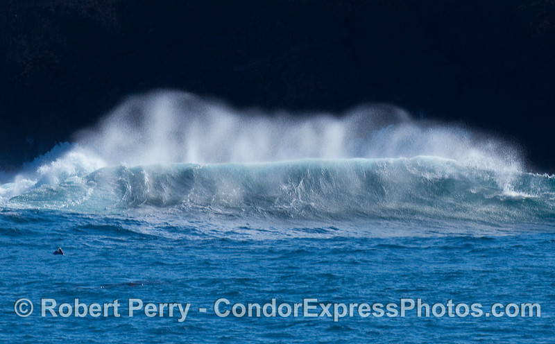 Wave and spray, Santa Cruz Island.