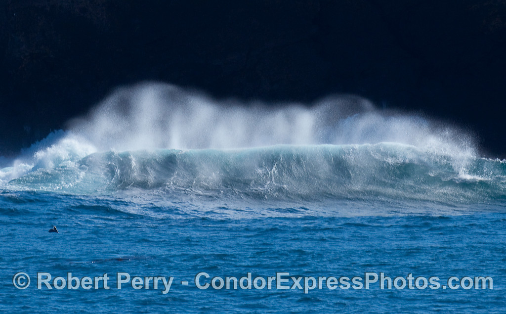 Wave and spray, Santa Cruz Island.