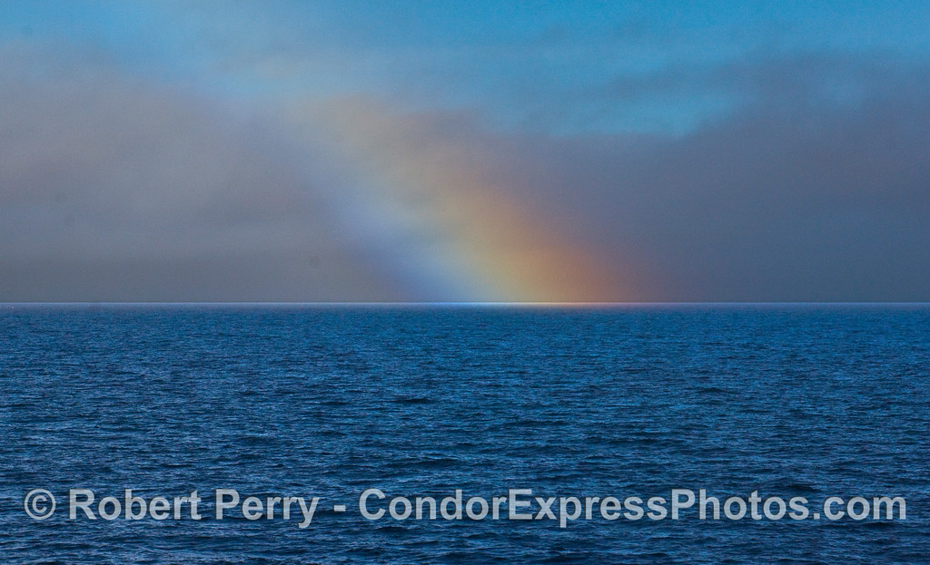 Spending a great day on the water in the rain paid a nice bonus with this open ocean rainbow.