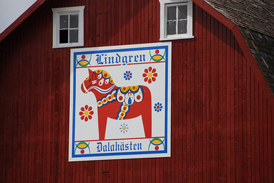 2009 Lindgren Family Fun in August