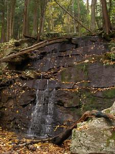 SLS_0031_loyalsock trail