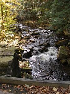 SLS_0032_loyalsock trail