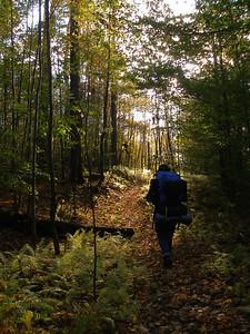 SLS_0040_loyalsock trail