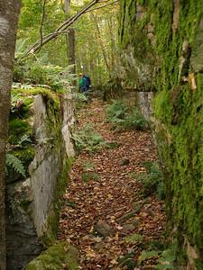 SLS_0054_loyalsock trail
