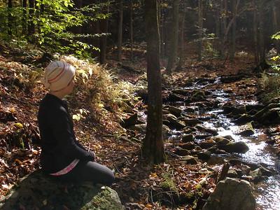 SLS_0014_loyalsock trail