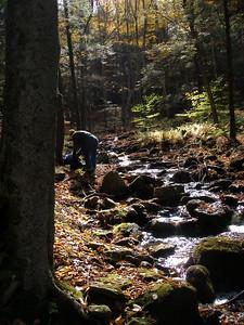 SLS_0012_loyalsock trail