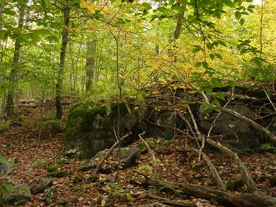 SLS_0046_loyalsock trail