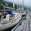 the docks at Westview Marina in Tahsis - this place is awesome