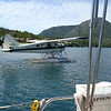the float planes in Hot Springs Cove have no qualms about taxiing through, taking off or landing right in the anchorage