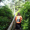 walking the trail along the coast outside of Ucluelet