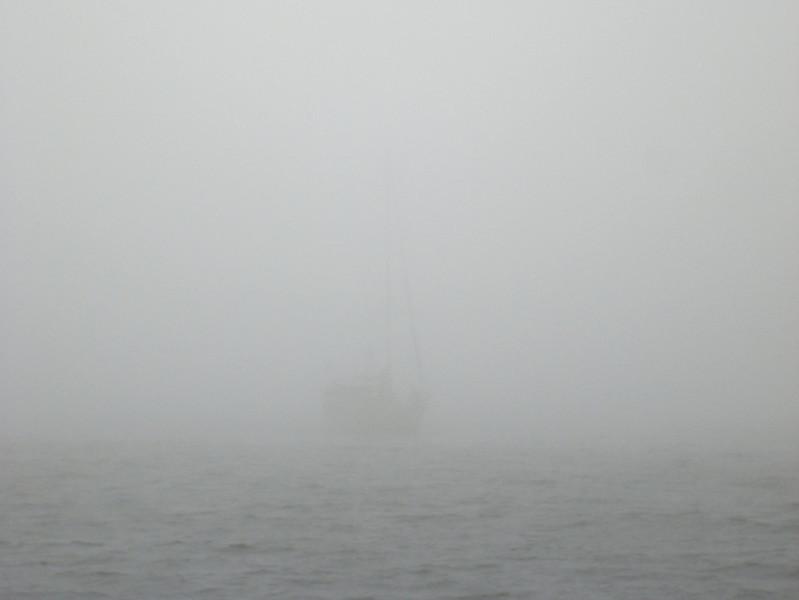 Happy Camper following us through the fog