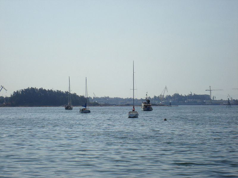 Hello World (all the way on the left) anchored in Esquimalt Harbor