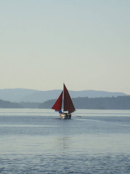 cool yawl with tanbark sails and rowing oars - hardcore