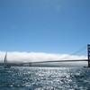 Hello World sailing past the bridge