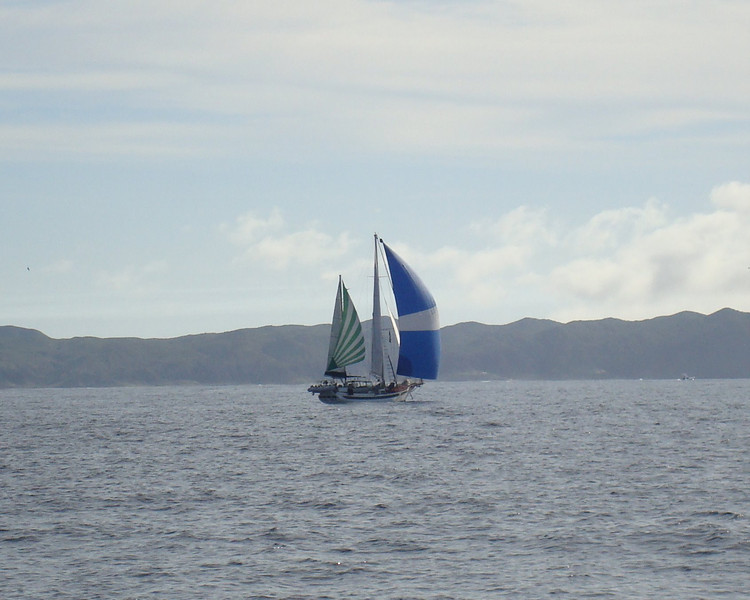 s/v Teal Sea running under an assortment of sails