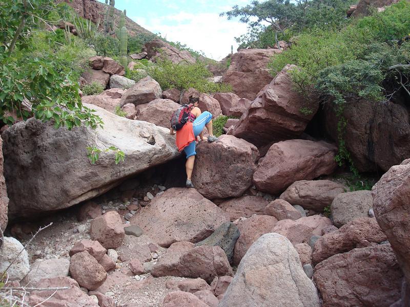 "more like scrambling up the ""trail"""