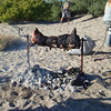 roasting a pig on the beach