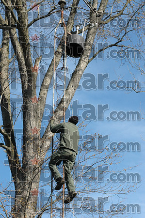 Camera: Indiana State Police Emergency Response Team member Brandon Trinkel climbs a tower to retrieve a video security camera at the scene of an early morning drug raid in southwestern Vigo Co.