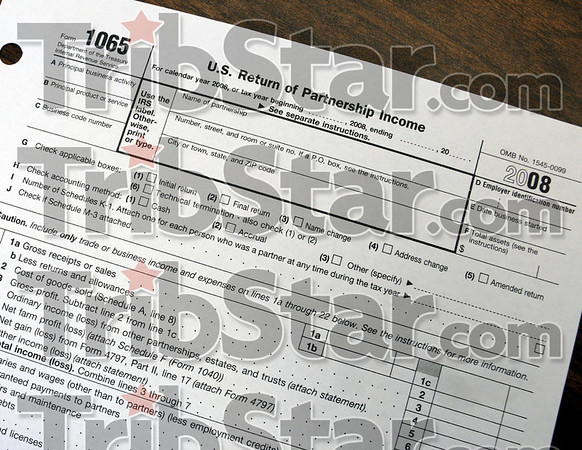 Tax detail: Federal tax form 1065 detail photo.