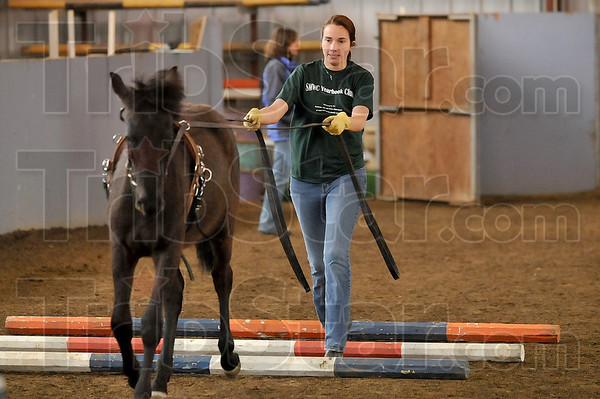 Tribune-Star/Joseph C. Garza<br /> Over the bars, no problem: St. Mary-of-the-Woods student Jennifer Steager guides Indigo, a mustang, over a set of bars during her final exam in equine 111 Thursday at the college.