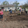 "Community garden: Participants stake out their gardens Saturday morning as part of ""plant a plot"" day on ISU property."