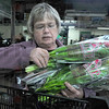 Good variety: Hospice volunteer Judy Elslager stacks tulips into a crate Tuesday evening at The Tulip Company. Today is the annual tulip sale, a fundraiser for the Visiting Nurses Association and Hospice of the Wabash Valley. Bouquets are $10.00 each and can be purchased at Hospice of the Wabash Valley at 400 8th Avenue, at Elder Beerman and at Union Hospital's Professional Office Building. The bouquets are also available at West Central Community Hospital in Clinton.