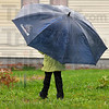 Covered: Mariah Allison walks home from school Tuesday afternoon well covered from the rain by an oversized umbrella.