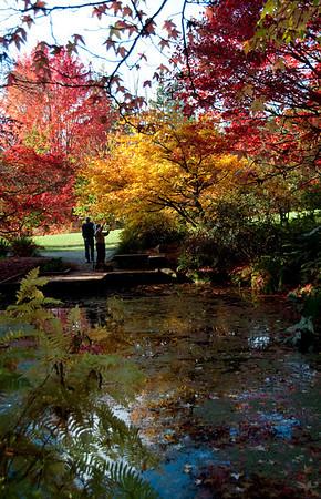 Arboretum, WA