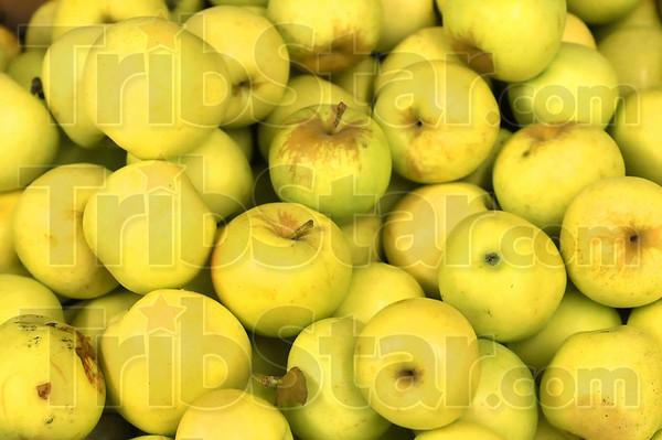Tribune-Star/Joseph C. Garza<br /> A slice of local produce: Apples at Poplar Street Farmers Market which is coordinated by Jamie Behem.