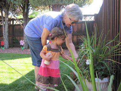 Miss Mia and Gogo Deadheading Gramma Edith's Flowers