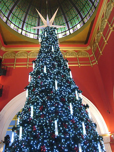 The very nice Christmas tree that was in the Victoria building.