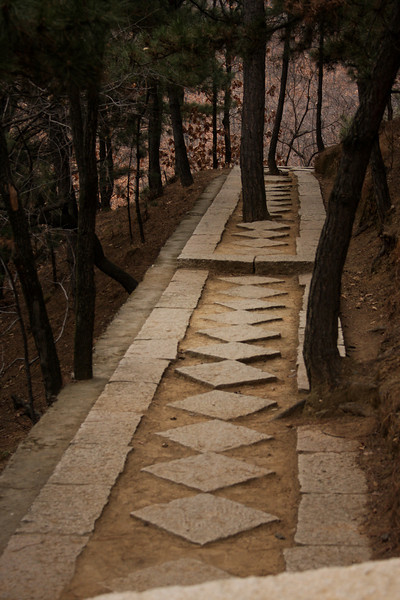 Trees grow in the pathway up the mountain to the great wall.