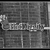 Hot Diggity Sign at 1 Washington St