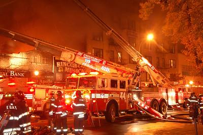 Bronx 10-28-09 026