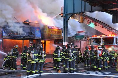 Bronx 3-22-09 019
