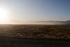 Black rock desert in the morning