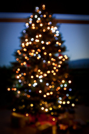 The Christmas Tree, as seen from the Bokeh of the lights.
