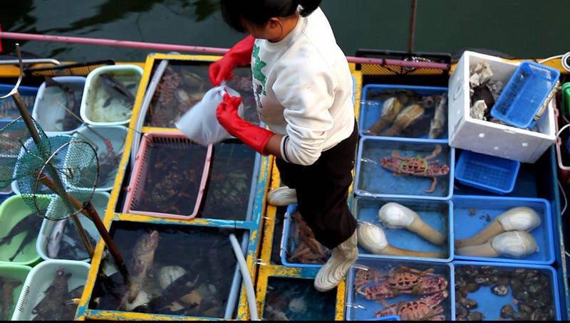 Buying sea food at Sai Kung, Hong Kong