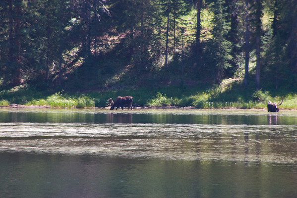 8.20 Piney River Falls
