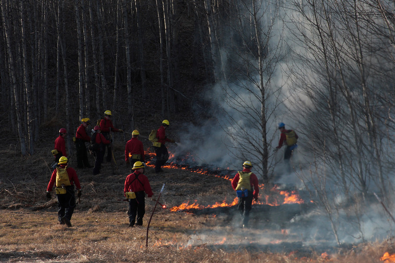 Crews work the woods to keep the fire in the grass.