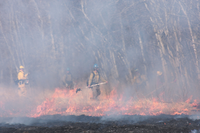 Holders stand ready to stop the fire at the edge of the field so it can't get into the woods.