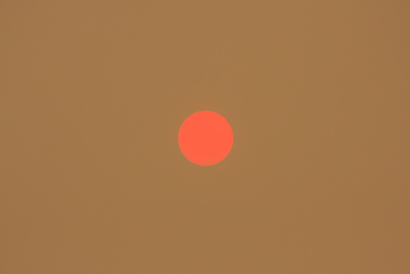 When the smoke gets thick, the sun takes on a more defined shape.