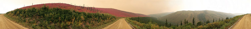Fireweed blooms rampant in a 360-degree panorama of the Steese Highway with a pall of smoke tinting half the horizon.