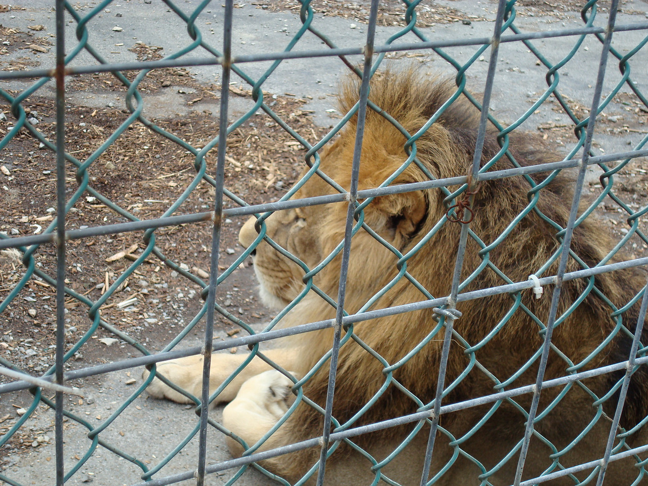 Tri-State Zoological Park